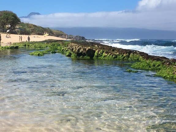 One of the many Ho'okipa Beach protected tide pools