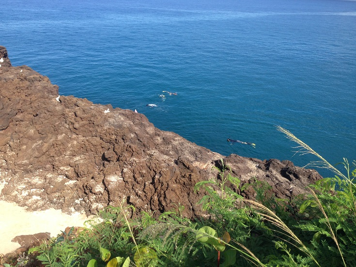 Snorkelers cruise past the cliffs at Black Rock