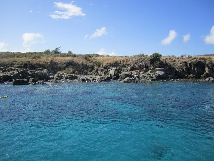 Turtle Cove at Buck Island, St Thomas