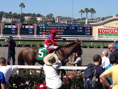 A Del Mar winning horse poses for pictures
