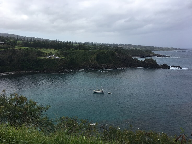 View from the road above Honolua Bay