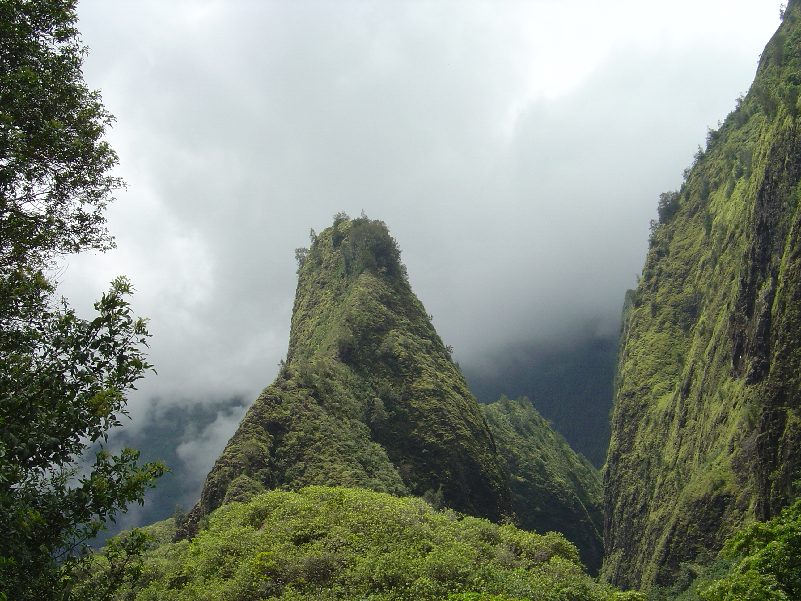 View of the Ioa Needle from one of the hiking trails
