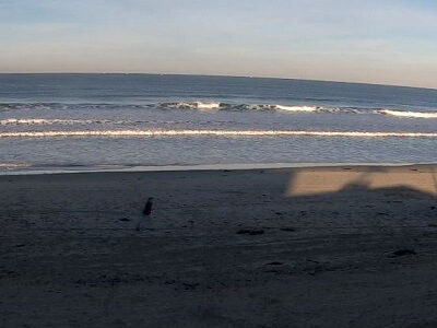 Live webcam view of the surf and beach at Mission Beach
