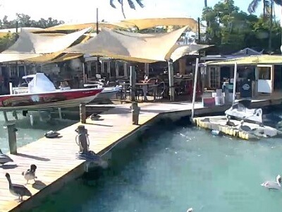 360 degree live webcam showing the dock area at Robbie's Tarpon