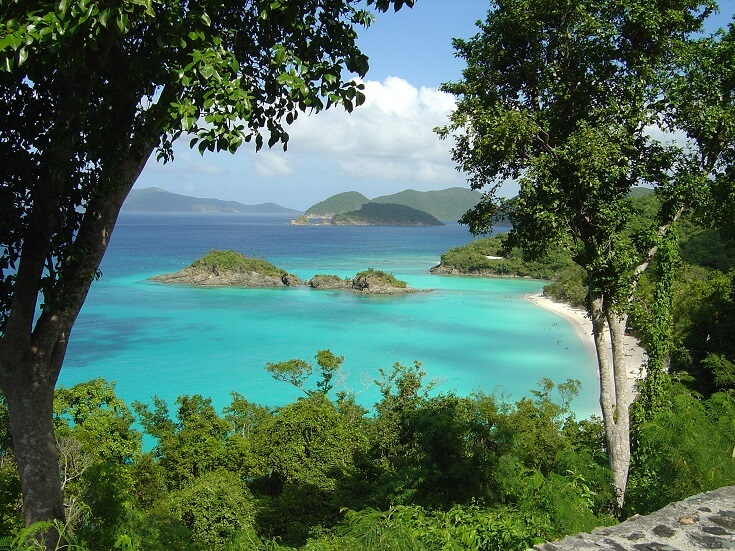 The turquoise waters surrounding St John's Trunk Bay