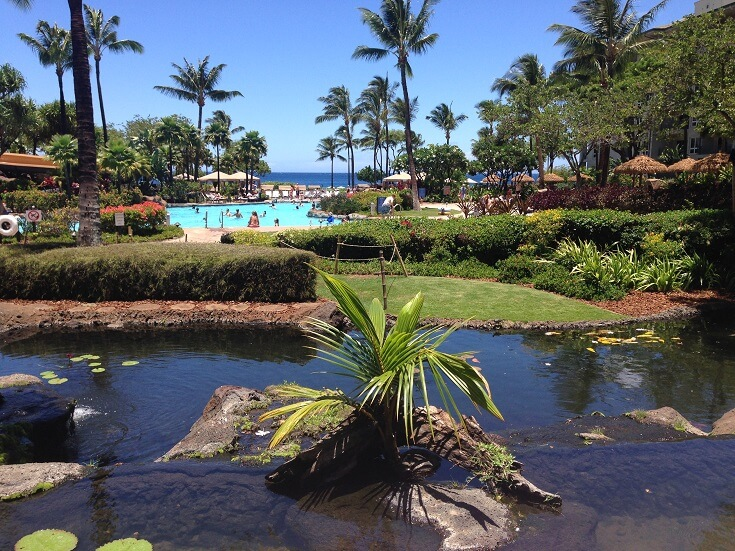 Koi pond looking out over the pool area and ocean
